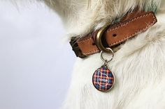 Each ID tag has a profile in the Pet Widget app and has an NFC as well as a QR code.