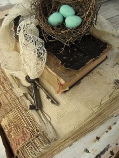 Robin blue eggs nestled amongst the aged treasures that find themselves saved...