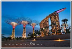 Gardens by the Bay     http://soloha.vn/tham-trai-san-khach-san/tham-trai-san-khach-san-sa-ma-113.html