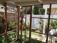 Cat Cages, Cat Enclosure, Divider, Cat Stuff, Cats, Room, Diy, Animals, Furniture