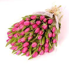 Love tulips in the spring!