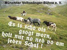 Genau so is, - http://www.mvb-ev.de/allgemein/genau-so-is/