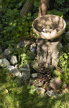 Nature Altar Outdoors - The Mystic's Emporium on Etsy