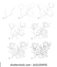 Drawing Lessons, Draw Flowers, Image Collection, Pencil Drawings, Magnolia, Beautiful, Stock Photos, Painting, Design