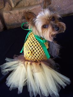 Sunflower Dog TuTu Dress Hair bow included by Frillypaws on Etsy