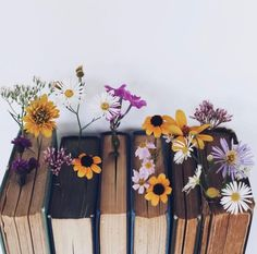 Find images and videos about wallpaper, series and netflix on We Heart It - the app to get lost in what you love. Flower Aesthetic, Book Aesthetic, Aesthetic Photo, Aesthetic Pictures, Book Photography, Creative Photography, Photography Flowers, Photo Bougie, Book Flowers