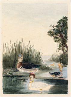 Victorian photocollage; swans do look a bit like prim ladies