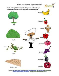 Fruits and vegetables can be very fun to learn about with our cute matching worksheet for children.