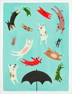:D raining cats and dogs via http://www.quillandfox.com/Raining-Cats-Dogs-Poster.html