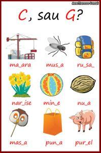Phonetic Alphabet, Classroom, Kids Rugs, School, Blog, Class Room, Kid Friendly Rugs, Blogging, Nursery Rugs