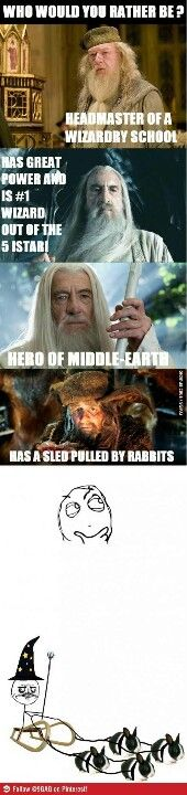 Radagast. When I grow up, I want to be a wizard with a rabbit sled