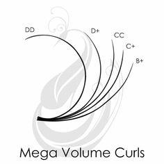 Curl Lashes, Curling Eyelashes, Volume Lashes, Eyelash Extensions Classic, Volume Lash Extensions, Eyelash Extensions Natural, Whispy Lashes, Perfect Eyelashes, Eyelash Technician