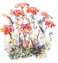 """Saatchi Art is pleased to offer the drawing, """"botanical patchwork,"""" by susan strangio. Original Drawing: Pencil on Paper. Art Illustrations, Illustration Art, Silverpoint, Watercolor Canvas, Coloured Pencils, Color Pencil Art, Sand Art, Art Journaling, Colouring"""