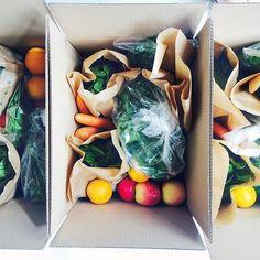 http://www.superfoodguru.nl/shop/lidmaatschap-boxen/