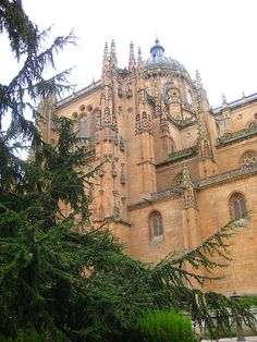 Cathedral de Salamanca in Salamanca. I'm probably going to go to mass at least once a week while I'm studying abroad...