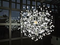 Cbus52: Columbus in a Year: Bruce Munro: Light at Franklin Park Conservatory and Botanical Gardens