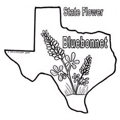 texas coloring pages