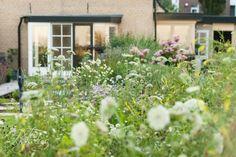 Over bloemenweide zicht op woning in deze landschappelijke poldertuin te Ouderkerk aan den IJssel