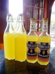 Homemade Limoncello Makes 4 mL) bottles Ingredients 15 to 20 organic lemons 2 mL) bottles high-proof pure grain alcohol (I use Everclear) 6 cups water 4 cups sugar See www.gardenbetty for method Making Limoncello, Limoncello Recipe, Homemade Limoncello, Cocktail Drinks, Fun Drinks, Yummy Drinks, Alcoholic Drinks, Cocktails, Drinks Alcohol