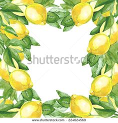 Watercolor lemons tree on a white background - stock photo