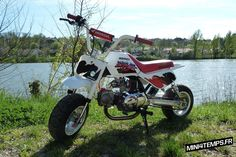 "Honda Monkey Baja ""Little Toy"""