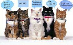 hahaha very funny