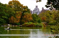 Central Park In Spring by LShanksPhotography on Etsy https://www.etsy.com/listing/113701200/central-park-in-spring