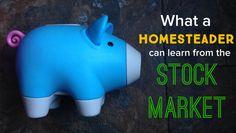 What a Homesteader Can Learn from the Stock Market - Homesteady Starting A Farm, Pig Farming, Small Farm, Farm Life, Stock Market, Piggy Bank, Homesteading, Raising, Farmer
