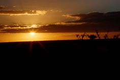 Star Sunset over Addo Addo is a town in Sarah Baartman District Municipality in the Eastern Cape province of South Africa. Region east of the Sundays River, some 72 km northeast of Port Elizabeth.