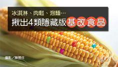 基改食品大解密/你所不知道4大類「隱藏版基改食品!」 - 康健雜誌188期 - 原料,加工食品,基改食品,基因改造