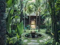 RedDoor is a luxury villa in Bali, perfectly situated in the quiet and beautiful beach village of Canggu. Experience an unforgettable escape vacation to Bali. Garden Villa, Garden Pool, Garden King, Palm Garden, Villa Pool, Tropical Gardens, Zen, Glasgow, Villas