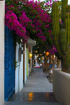 The charming little town of Todos Santos in Baja California Sur, Mexico is one of the Baja Peninsula's best-kept secrets.