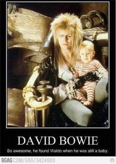 Funny pictures about David Bowie. Oh, and cool pics about David Bowie. Also, David Bowie. Angela Bowie, I Smile, Make Me Smile, Beatles, Fraggle Rock, Good Movies, Greatest Movies, Awesome Movies, Awesome Things