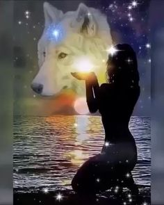 Native American Wolf, Native American Pictures, Native American Artwork, Native American Quotes, American Indian Art, Beautiful Love Pictures, Beautiful Gif, Animals Beautiful, Fantasy Wolf