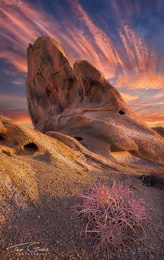 Out Here a Man Settles His Own Problems...Sunrise in the Alabama Hills. I love the Barrel Cactus. It's pink!