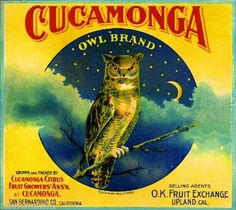 Print Title: Owl Orange Label - Upland, CA. Brighten up any space with high quality framed and ready to hang art prints. Owl Orange Label - Upland, CA is just one that helps you create effortless style and adds character to any room. Vintage Labels, Vintage Ads, Vintage Posters, Retro Ads, Vintage Ephemera, Vintage Paper, Vintage Signs, Vintage Prints, Orange Crate Labels