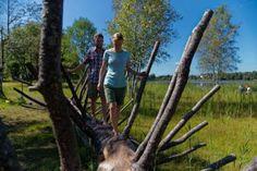 Erlebnisreicher Barfußpfad rund um den schönen Moorsee in Bad Bayersoien
