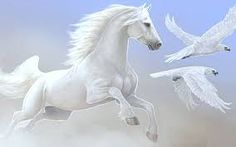 Cavalli/Horses ~ Il Magico Mondo dei Sogni