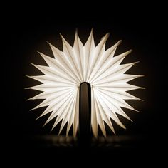 Max Gunawan is raising funds for Lumio: A Modern Lamp With Infinite Possibilities on Kickstarter! Lumio unfolds from a book into a multi-purpose portable lamp. Transform Lumio into many shapes to meet your needs! Light Art, Lamp Light, Light Fixture, Home Design, Interior Design, Origami Lights, Design Creation, Book Lamp, Original Design