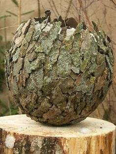 Bark globe #naturecrafts