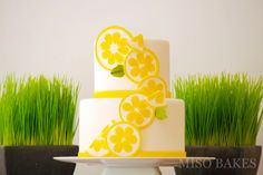 MISO BAKES - decorated with lemon slices!