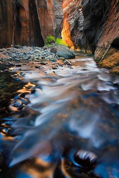 Reflected light in the Virgin River Narrows of Zion National Park, Utah, USA