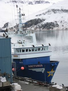 F/V Arcturus during an offload in Akutan, AK. Picture by yours truly.