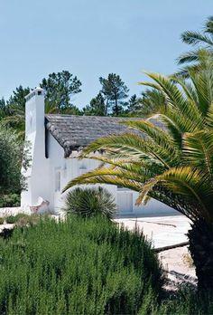 Façade d'un blanc pur - Des passerelles de bois tracent les chemins, jusqu'à la mer. Réalisée en planches chaulées, la cabane de Vera dissimule un loft grand ouvert sur la nature.