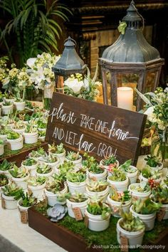 6 Nature Wedding Decor Ideas That Are Trending Like Crazy by.- 6 Nature Wedding Decor Ideas That Are Trending Like Crazy by DLB wedding decor ideas, natural wedding, wedding trends - Beach Wedding Favors, Wedding Favors For Guests, Unique Wedding Favors, Plant Wedding Favors, Cheap Bridal Shower Favors, Unique Weddings, Rustic Bridal Shower Decorations, Cool Wedding Ideas, Wedding Plants