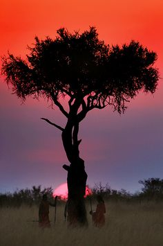 Sunrise or sunset in Africa. Beautiful Sunset, Beautiful World, Beautiful Places, Oh The Places You'll Go, Places To Visit, African Sunset, Out Of Africa, Kenya Africa, South Africa