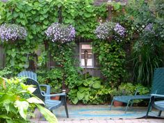 I love this look - would love to have something like this in front of my shed