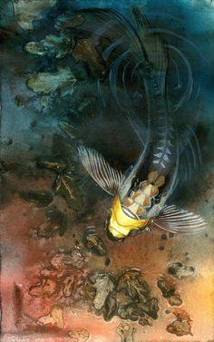 Koi print, dark water