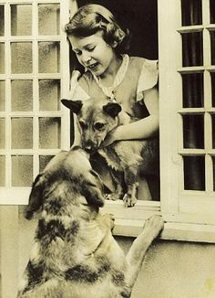 Princess Elizabeth appropriately introduces one of her Welsh Corgis to her father's Yellow Labrador, Mimsy. 1936