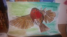 Robin bird flying with Winsor and Newton paints By Jade Hurdle